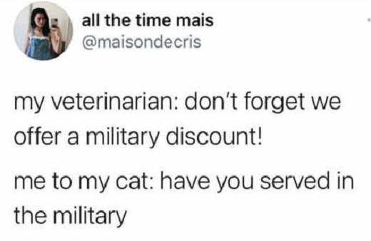 tweet all time mais veterinarian military discount cat
