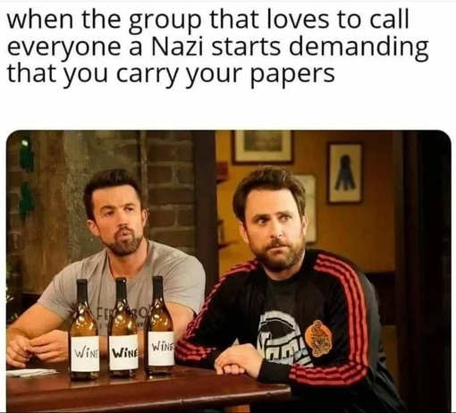 when group calling everyone nazis demanding you carry papers