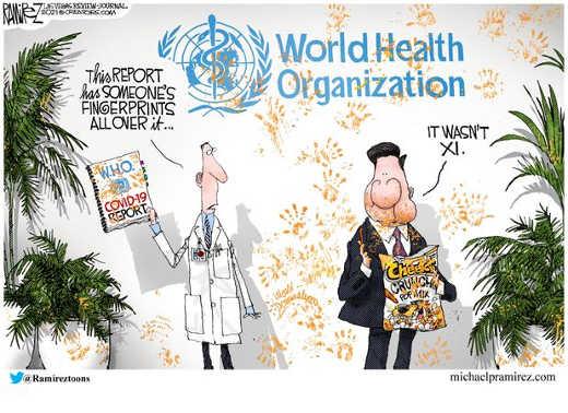 who world health organization covid 19 report cheetos xi china fingerprints