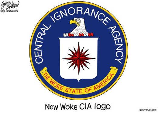 central ignorance agency cia woke state of america