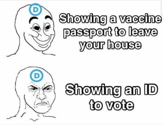 democrats showing vaccine passport leave house no voter id