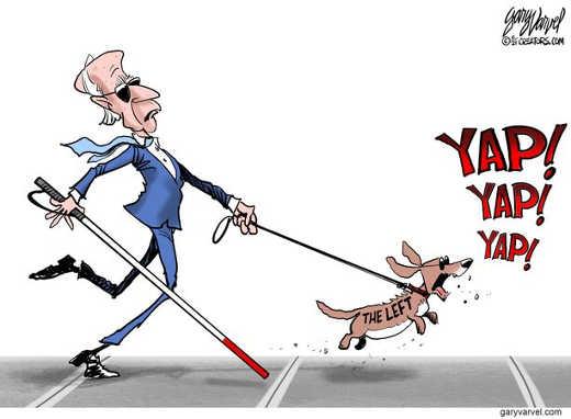 joe biden blind letting yapping left dog lead