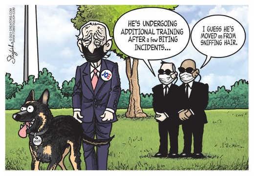 joe biden dog moved on training sniffing hair