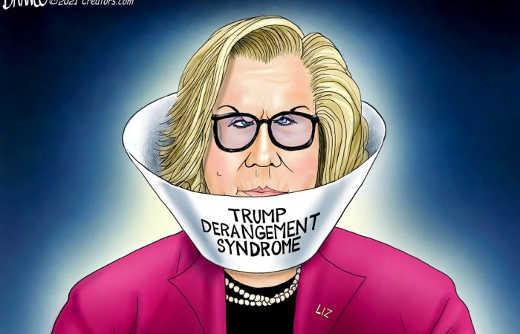 liz cheney trump derangement syndrome cone