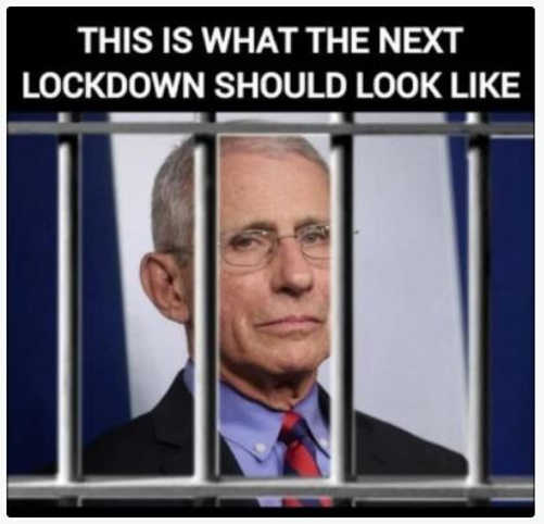 message dr fauci prison what the next lockdown should look like