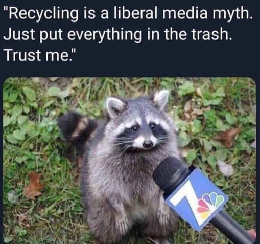 recycling liberal myth racoon put in trash interview