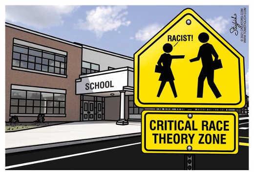 school critical race theory crt racist zone