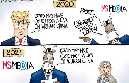 trump covid wuhan media conspiracy 2021 egg face