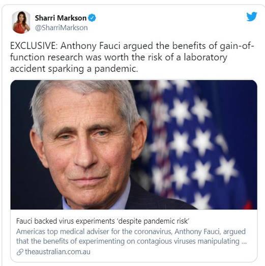 tweet sharri markson australian fauci backed experiment despite pandemic risk