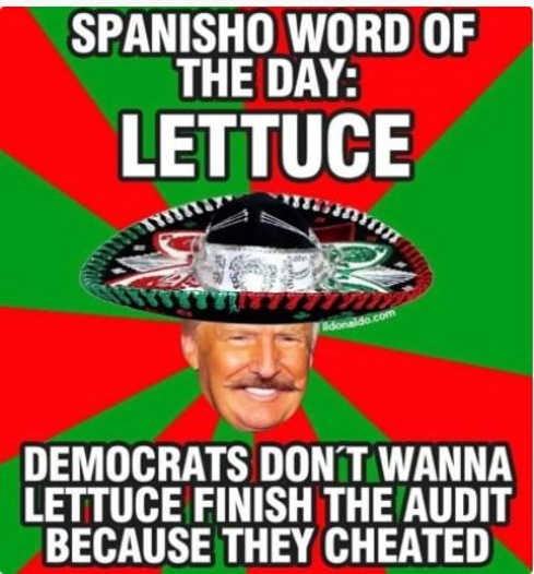 word of day lettuce democrats wont finish audit because cheated trump