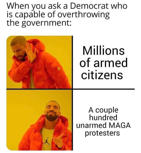 democrat million citizens guns cant overthrow government 100 unarmed maga protesters yes