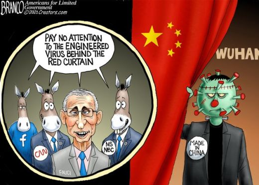 fauci facebook cnn msnbc wuhan covid made in china pay no attention