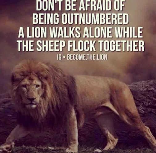 message dont be afraid outnumbered lion walks alone sheep flock together