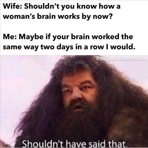 wife should know womans brain maybe if worked same way two days in row