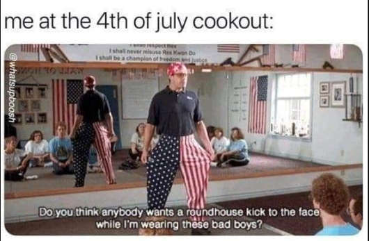 4th july cookout nobody roundhouse kick face napolean dynamite