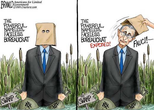 dc swamp powerful nameless faceless bureaucrat dr fauci exposed