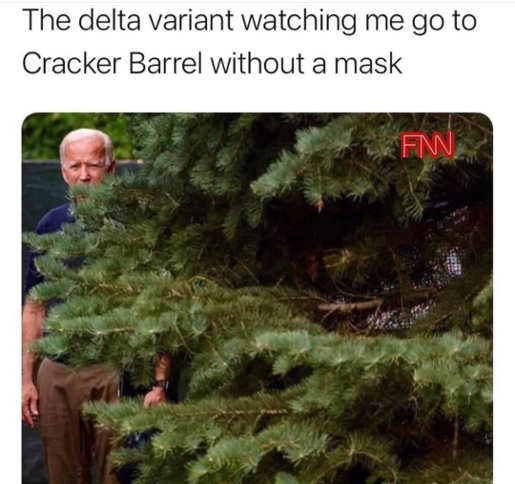 delta variant watching me cracker barrel joe biden