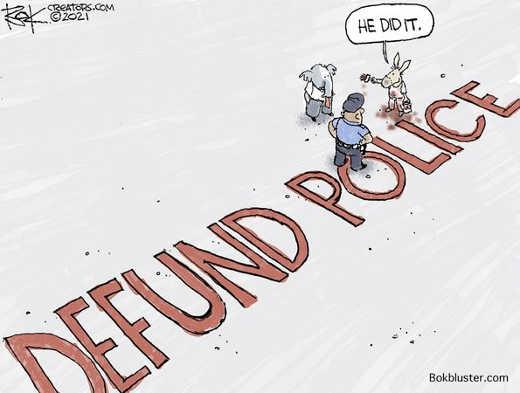 democrats defund police caught republicans did it