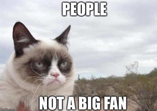 grumpy cat people not big fan