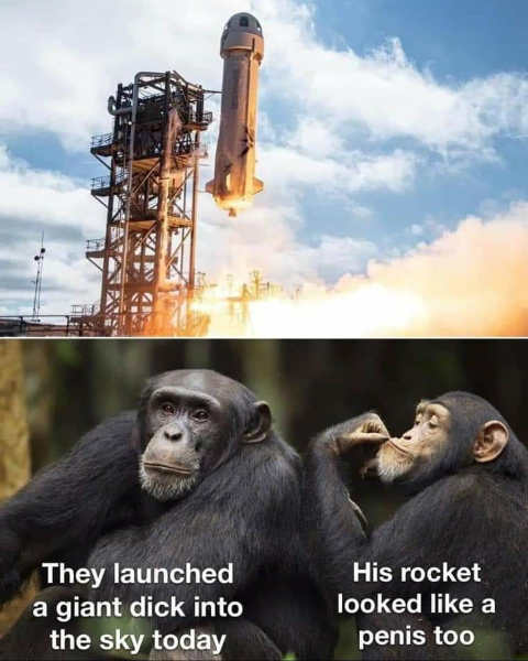monkeys jeff bezos space launched dick