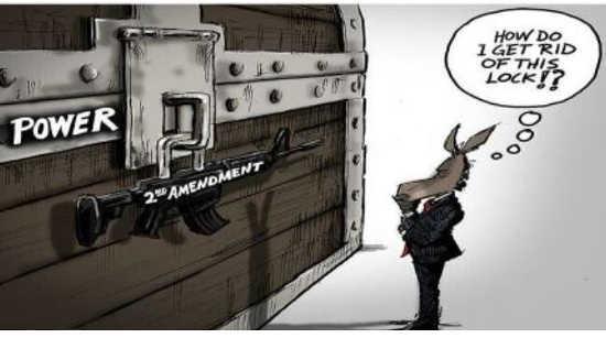 democrats power 2nd amendment get rid of guns
