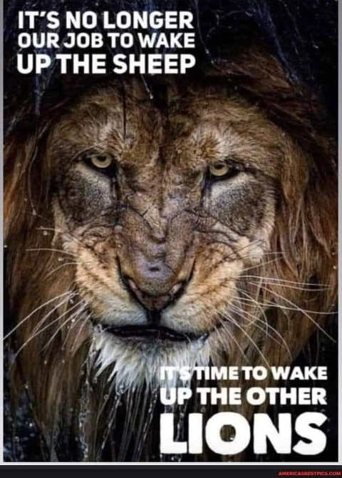 message no longer job wake up sheep now other lions