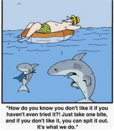 shark kid just take one bite swimmer