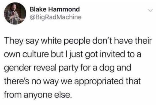 tweet hammond white culture dog gender reveal