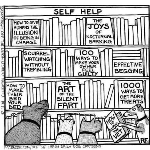 dog self help books vet owner treats