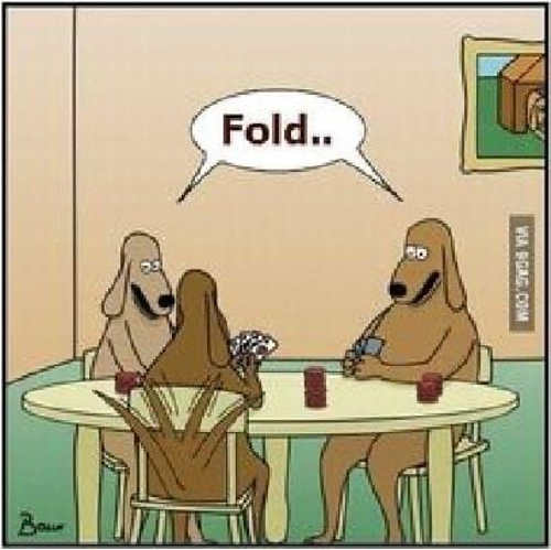 dogs playing poker wagging tail