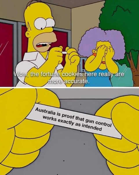 homer simpson australia proof gun control works exactly as intended fortune cookie
