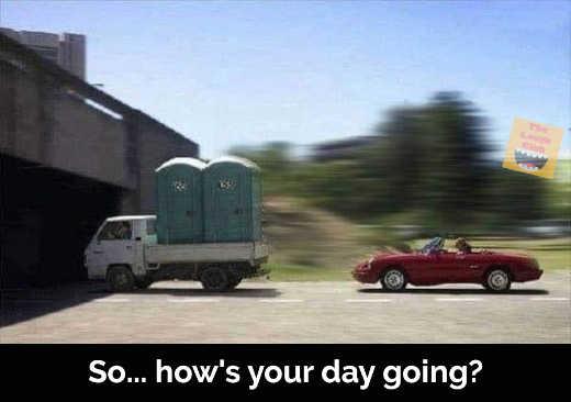 hows your day going portapotties car bridge