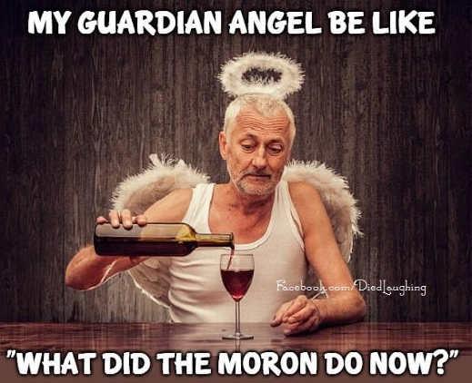 my guardian angel moron wine drinking