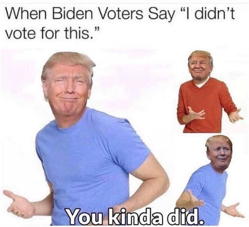 when biden voters say didnt vote for this trump kinda did