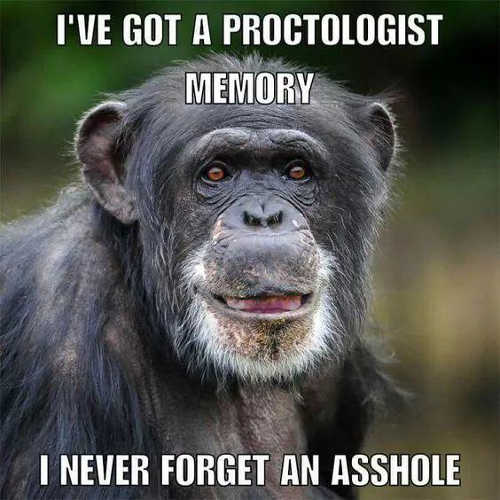ive got proctologist memory always remember asshole