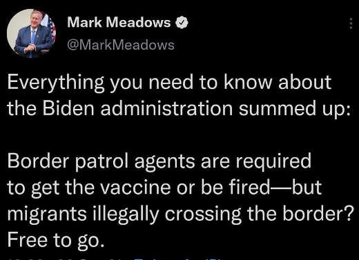 tweet meadows border vaccine or fired illegals free to go