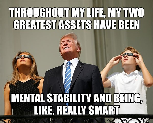The 30 Funniest Memes Mocking Trump's 'Very Stable Genius' Boast - The  Political Punchline
