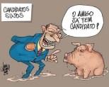 candidato_e_porca
