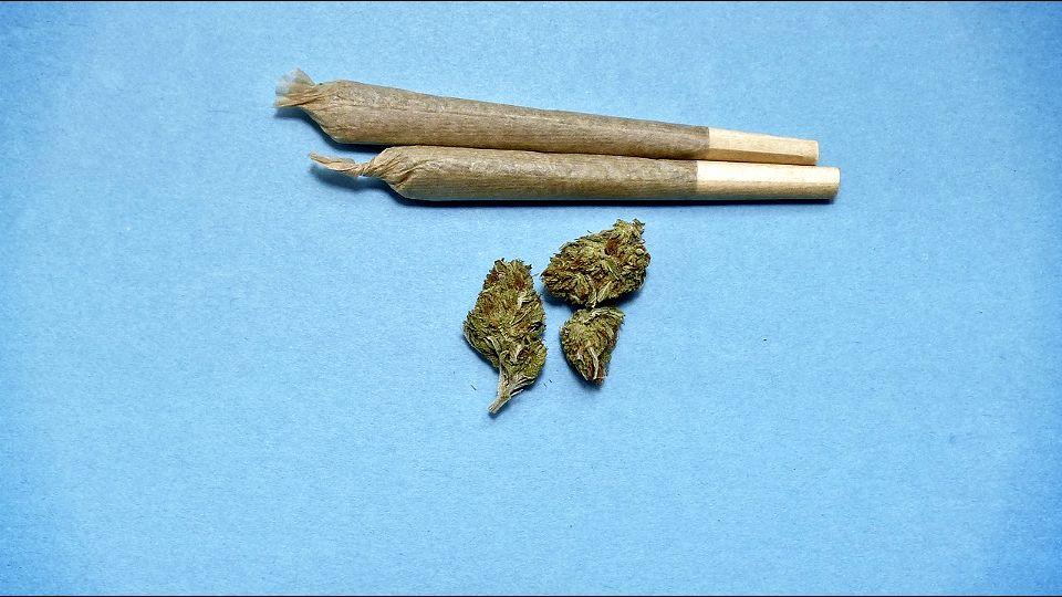Američki institut: Marihuana povećava rizik od COVID-19