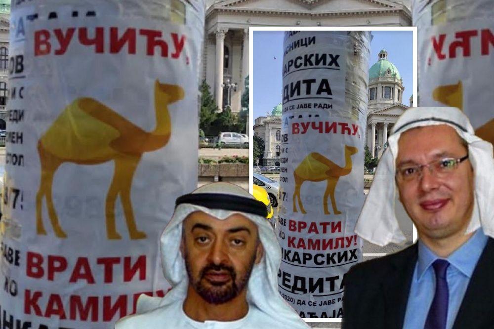 "U centru Beograda plakati ""Vučiću, vrati kamilu"""