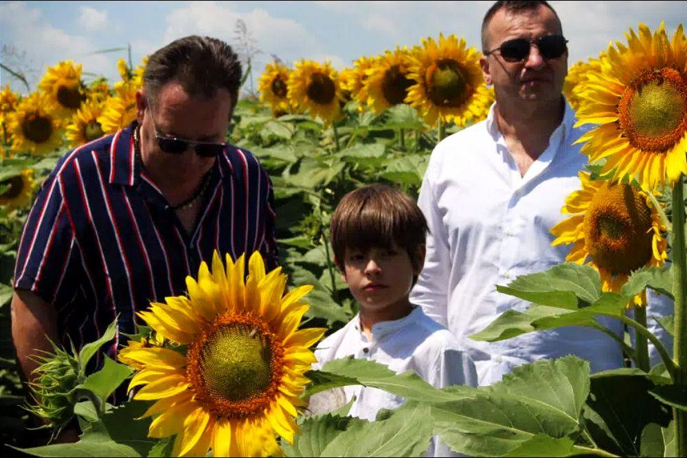 Dani domaćeg filma u više od 40 bioskopa širom Srbije