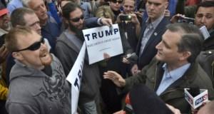 Ted Cruz endorses