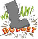 stomp budget