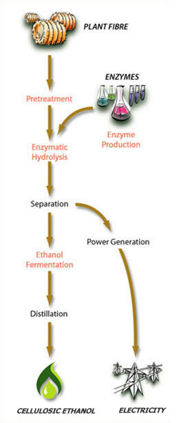 iogen cellulosic ethanol