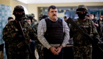 Female assassins for drug cartels
