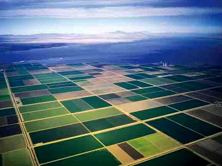 Imperial Valley fields. All their water comes from the Colorado River