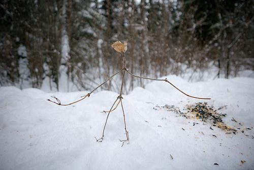 slender man photo
