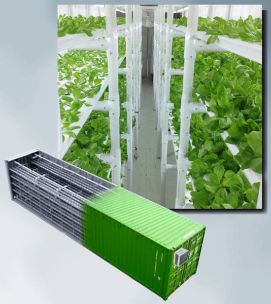 cropbox