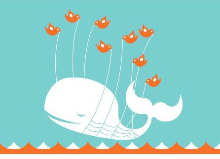 CSSfailwhale