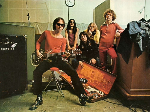 Flamin Groovies then